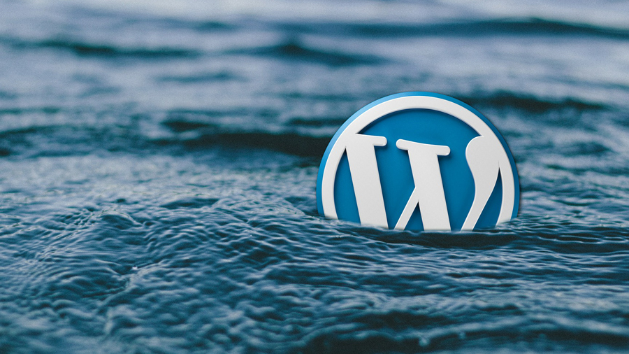 recuperar version de wordpress
